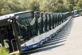 Kraków. Te autobusy wożą nas po mieście. Od autobusów przegubowych do minibusów [ZDJĘCIA]
