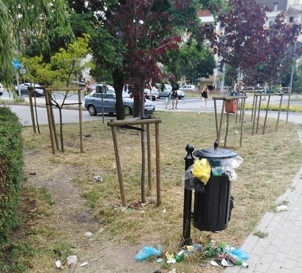 Oto zdjęcia nadesłane radnym przez mieszkańców Torunia z rozmaitych okolic, np. z Szosy Chełmińskiej, ul. Długiej, Przy Kaszowniku i innych.