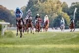 Wyścigi konne wróciły na wrocławskie Partynice (ZDJĘCIA)