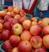 Wiosna się spóźniła, czy zbiory jabłek na Podkarpaciu będą obfite?