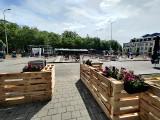 Gdyńska strefa rekreacji ze sceną letnią Blues Clubu. Zobaczcie jak wygląda były parking przy ul. Zawiszy Czarnego