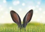 PIĘKNE ŻYCZENIA WIELKANOCNE SMS: Jakie życzenia na Wielkanoc? [ŚMIESZNE, PIĘKNE, DOWCIPNE, ORYGINALNE ŁAŃCUSZKI SMS 01.04.2018]