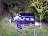 Jurowce. Zderzenie samochodu z łosiem. Kierowca ranny, łoś zginął na miejscu [ZDJĘCIA]