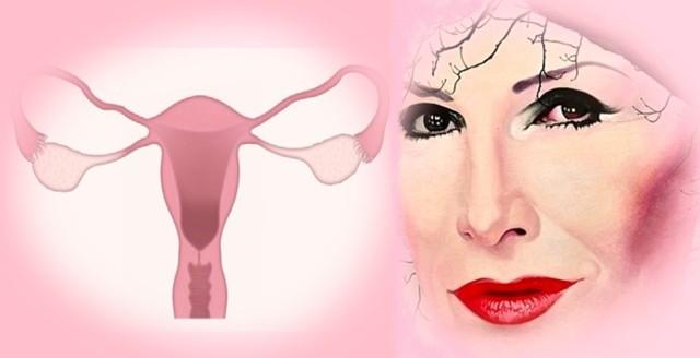 Rak jajnika co roku doprowadza do około 2,5 tysięcy zgonów wśród Polek. Niestety, ponad 70 procent kobiet w naszym kraju diagnozowanych jest za późno, by móc powrócić do zdrowia. Na raka jajnika zmarła m.in. Kora Jackowska. Artystka przez wiele lat walczyła z chorobą.