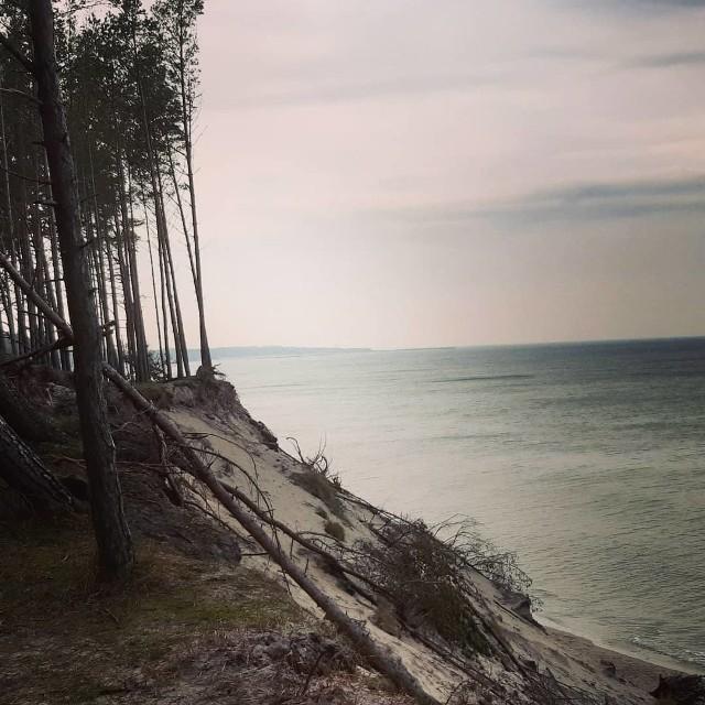 Trasa z Ustki do Orzechowa to idealny pomysł na weekendowy spacer. Idąc plażą, a wracając klifem możemy podziwiać niesamowite dzieło natury. Trasę w tę i z powrotem to około 6 kilometrów.