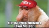 MEMY po meczu Widzew - Puszcza. Fani tęsknią za... Kaczmarkiem. Najbardziej krytyczne komentarze