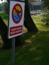 Jeziora Miedwie i Ińsko: wakacje zakończyły się z zakazem kąpieli