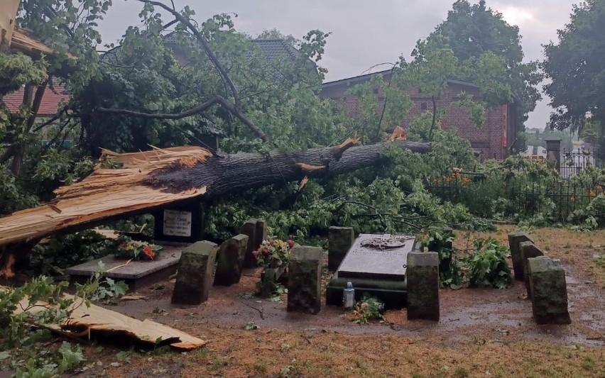 Zniszczenia na zabytkowym cmentarzu w Byczynie.