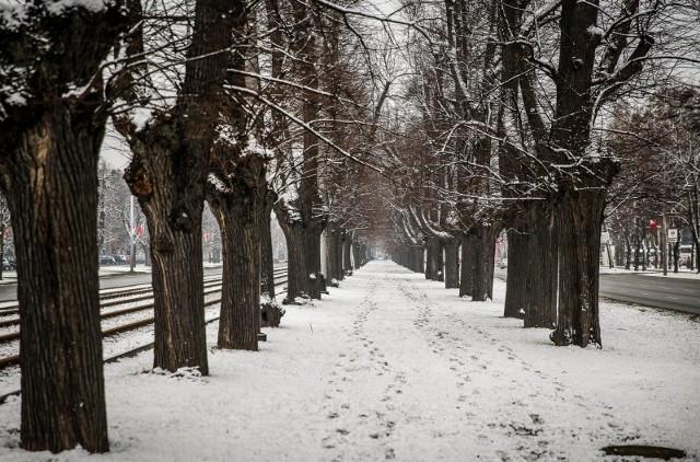 Przesilenie zimowe - kiedy pierwszy dzień astronomicznej zimy?