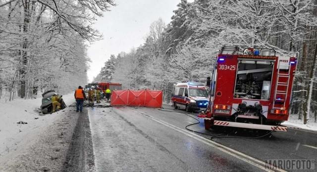 Śmiertelny wypadek na DK46 w okolicy Dąbrowy.