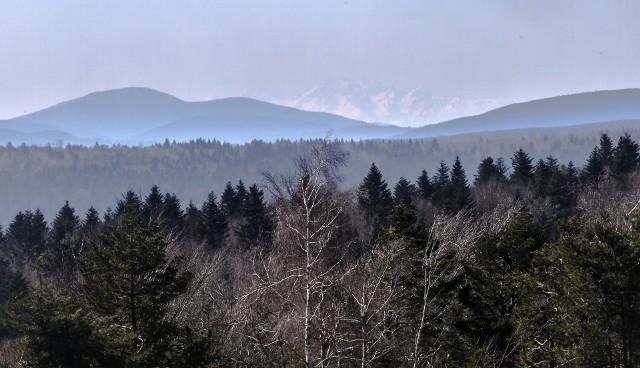 Wiosna powoli wkracza w Beskid Niski. Piękna pogoda w górach. Ze szczytu Wysokie widać Tatry!