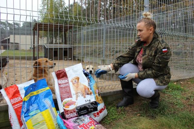 Jedzenie, koce i zabawki trafiły m. in. do czworonogów ze schroniska pod Międzyrzeczem. Pieski były zadowolone.