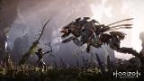 Horizon Zero Dawn za darmo na PS5 i PS4. Jak pobrać grę?