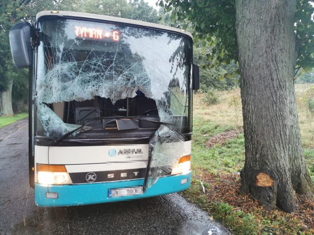 Do zdarzenia doszło na drodze koło Siemyśla. Autokar zderzył się z jeleniem. Na szczęście nikomu nic się nie stało w tym zdarzeniu.