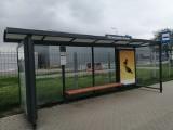 Firma Lisner ma swój przystanek w Poznaniu - to już czwarta firmowa wiata obok Plazy, Kinepolis i Orbita