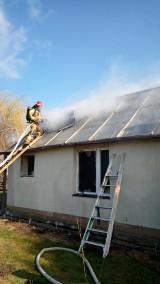 Pożar domu w Wąworkowie. Siedem zastępów straży w akcji