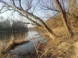 Nad Bobrem jest klimatycznie. Warto wybrać się na spacer w okolice Nowogrodu Bobrzańskiego