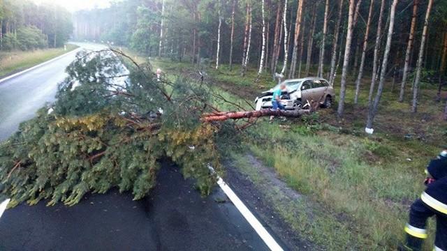 """W czwartek (9 czerwca) strażacy ochotnicy z Nowogrodu Bobrzańskiego interweniowali na """"trasie śmierci"""". Toyota wypadła z drogi i uderzyła w drzewo powalając je na drogę."""