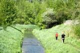 Spacerem po wiosennej dzielnicy Dziesiąta w Lublinie. Zieleni tu nie brakuje! Zobacz zdjęcia