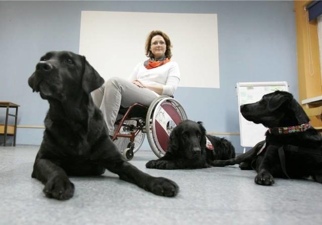 Psy mogą być nieocenioną pomocą dla osób na wózkach