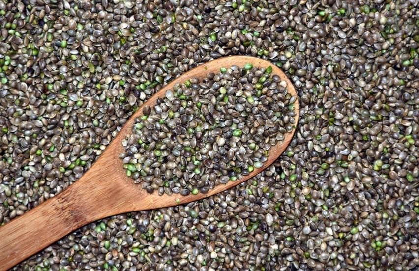 Nasiona konopi, zwane siemieniem albo orzeszkami konopnymi,...