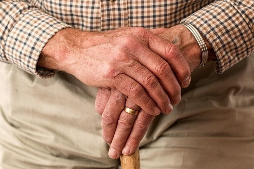 Emerytura w czerwcu 2020. Kiedy przejść na emeryturę? W tym roku opłaca się to zrobić także w czerwcu