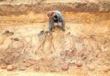 Archeolodzy odkryli w Błotnie mogiłę ze szczątkami około 20 osób