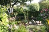 Ostrów Maz. Ale mają ładne ogródki! Zobaczcie zdjęcia