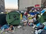 Od 1 lipca mieszkańcy Gorzowa, Bogdańca, Deszczna, Kłodawy, Lubiszyna i Santoka zapłacą więcej za śmieci