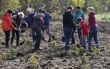 10 000 drzew zostanie posadzonych w Gdańsku. Pierwsze sadzenie już 22 kwietnia koło Parku Regana