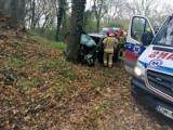 Wypadek pod Wrocławiem. W Maniowie samochód roztrzaskał się na drzewie [ZDJĘCIA]
