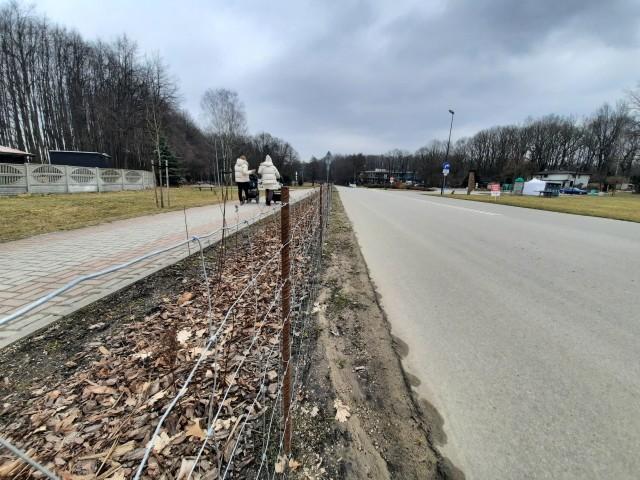 Pręty przy wjeździe na rolkostradę w Katowicach