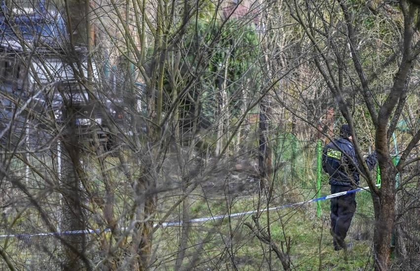 Poszukiwania Iwony wieczorek na terenie działek w Sopocie