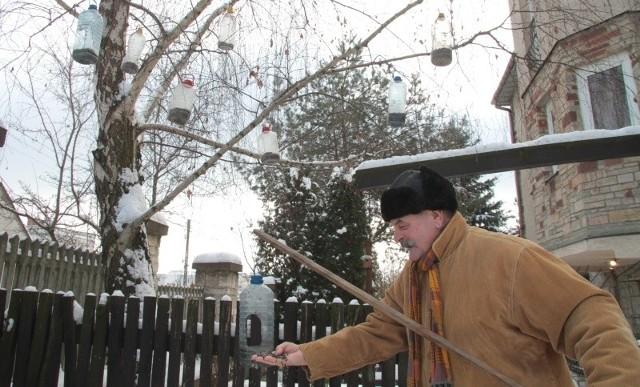 Pamiętajmy O Bezdomnych Zwierzętach Zimą Dokarmiaj Ptaki
