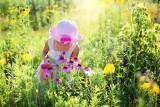 Te popularne rośliny w domach i na działkach są trujące! Najbardziej trujące rośliny w Polsce! 26.07.2021