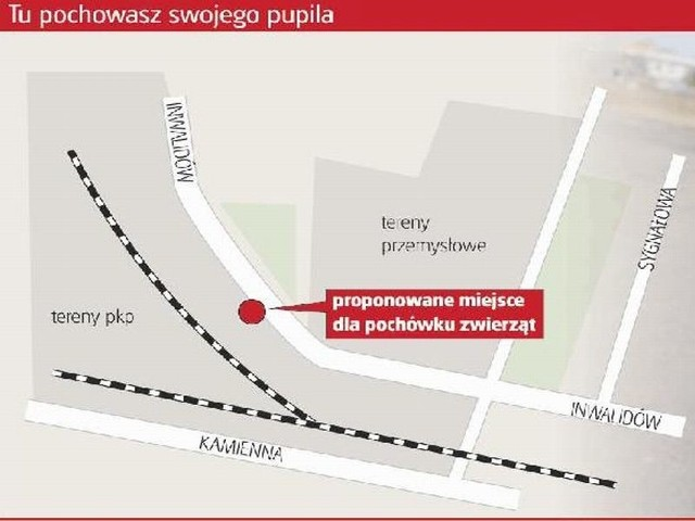 Bydgoszcz. To tu ma powstać spopielarnia dla zwierząt