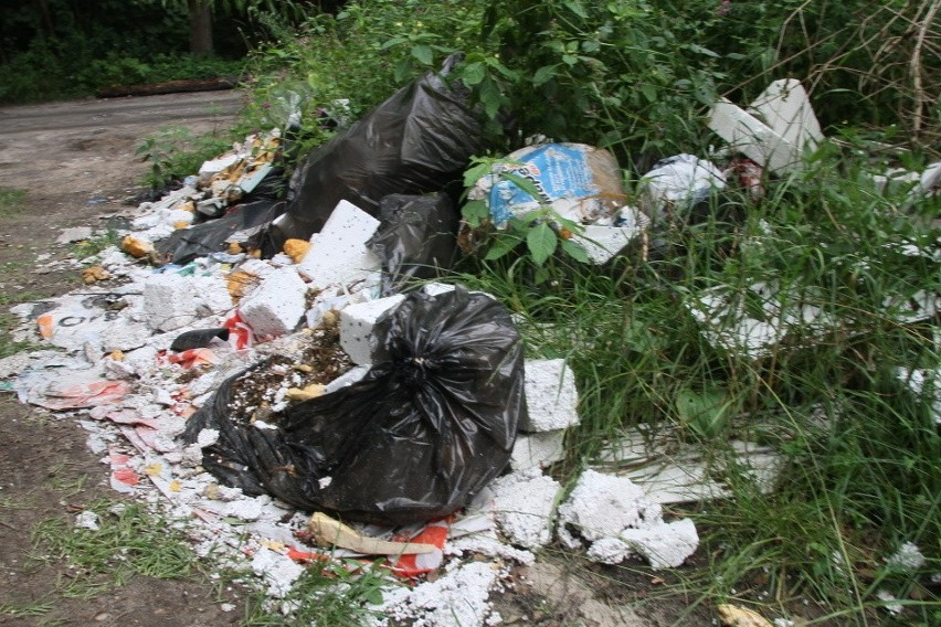 Na to, byśmy nie musieli oglądać w lasach stert śmieci,...