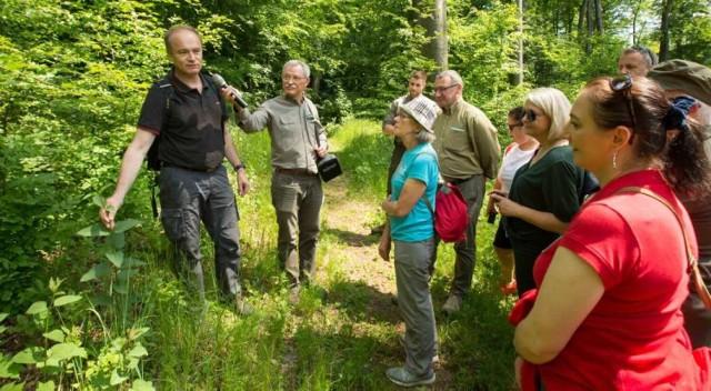 W Nadleśnictwie Olkusz 9 czerwca 2021 oficjalnie otwarto nowy rezerwat przyrody. Uczestnicy uroczystości nie omieszkali go zwiedzić