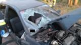 Wypadek w Rogaszycach - samochód uderzył w drzewo. Trzy osoby zostały ranne. 18-latka jest w stanie ciężkim [ZDJĘCIA]