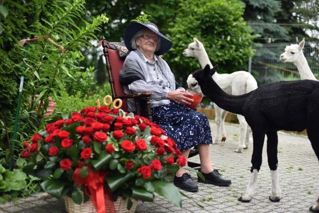 Mimo swoich 100 lat, jubilatka samodzielnie się porusza, wychodzi na spacery i karmi alpaki, co bardzo lubi, bo dodają jej - jak sama twierdzi - energii do życia.