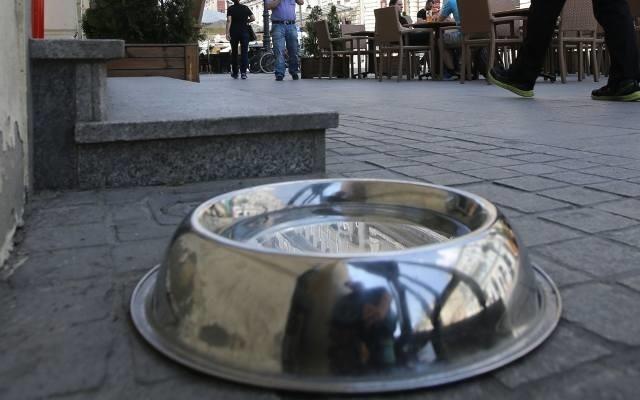 Wystarczy przed domem lub sklepem wystawić miskę z wodą, z której będą mogły korzystać spragnione zwierzęta.