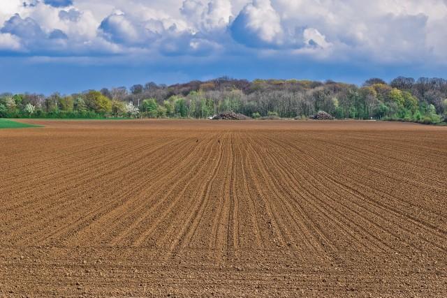 Zmienią się zasady odpłatności za grunty w użytkowaniu wieczystym