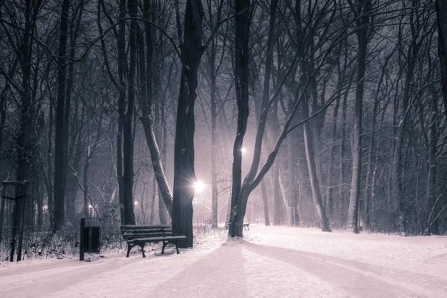 Pogoda na święta 2019. Prognoza pogody na Boże Narodzenie. Kiedy spadnie śnieg? Najnowsza prognoza pogody