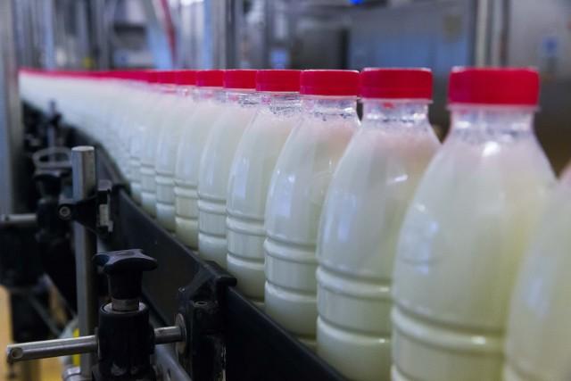 Indonezja jest jednym z największych odbiorców polskich produktów mleczarskich spośród krajów trzecich