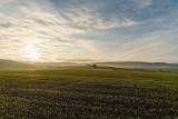 Licytacje komornicze w regionie radomskim. Tanie grunty rolne i działki