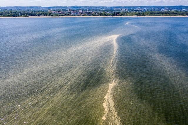 Żółta woda w Bałtyku