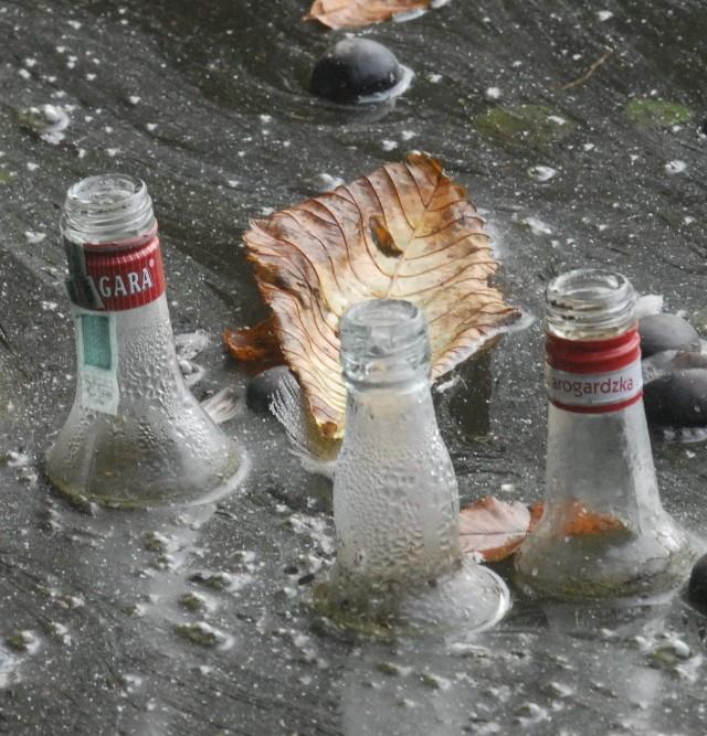 Pod koniec każdego tygodnia po stawie w parku Wiosny Ludów pływają butelki po wódce. - To pijaczkowie je tu zostawiają - mówią okoliczni mieszkańcy.
