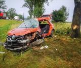 Groźny wypadek na DK8. Auto z impetem uderzyło w drzewo (ZDJĘCIA)