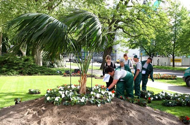Pomnik miałby stanąć na skwerze prezydenta. W miejscu, gdzie jeszcze do niedawna można było podziwiać szczecińską palmę.
