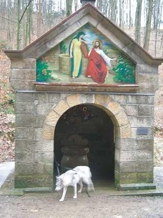 Obudowa źródła - murowany domek powstała w 1893 roku. Obraz przedstawia Jezusa i Samarytankę przy studni Jakuba.
